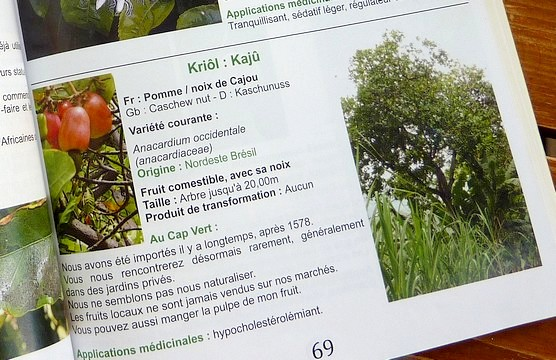 Detail Encyclopedie Nature