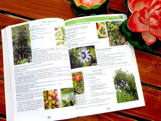 Encyclopédie Nature Archipel du Cap Vert