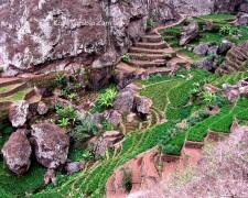 Santo Antão - Penede - Cultures en terrasses - Rando facile
